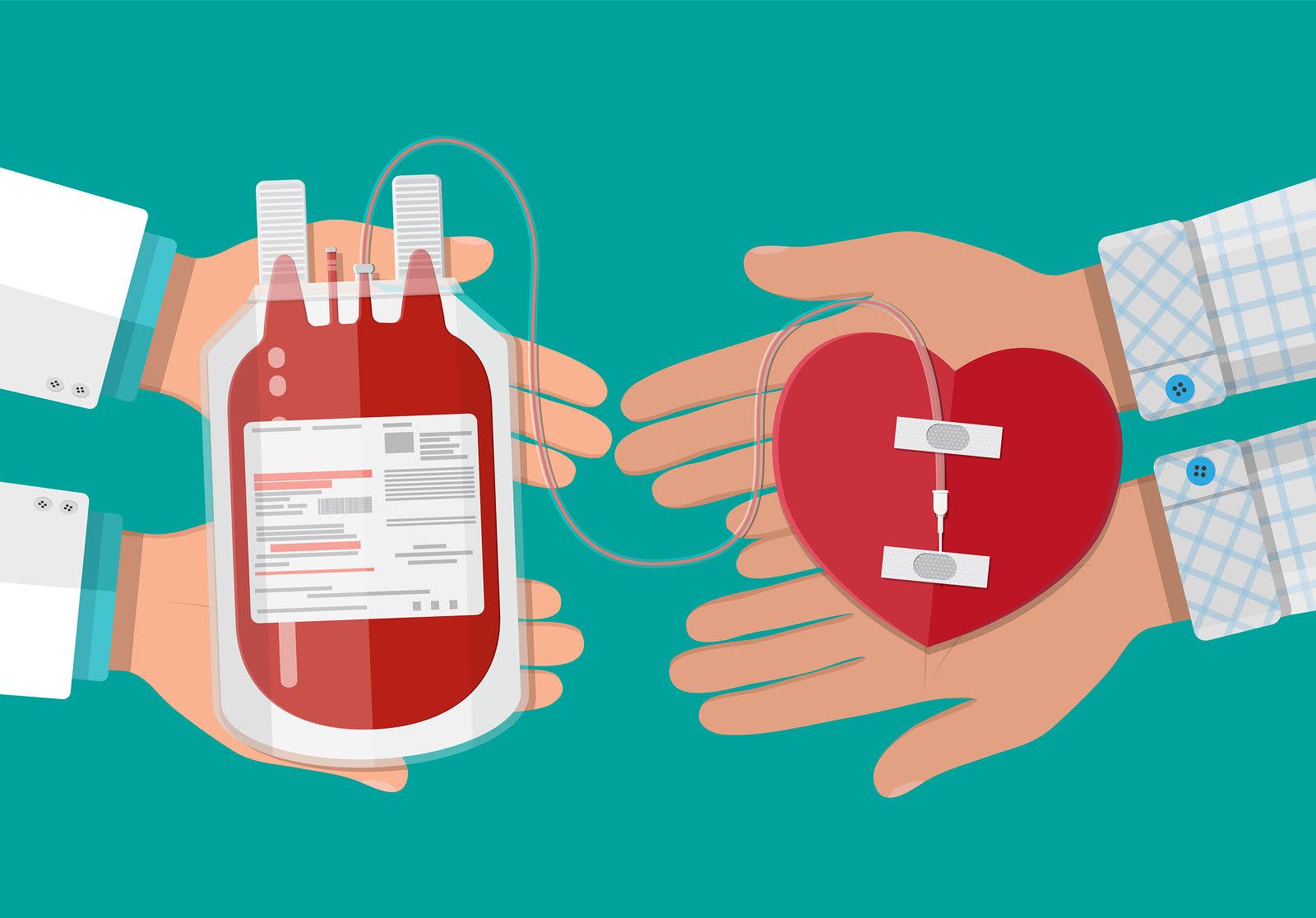 La Importància De Donar Sang